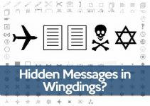 q33-nyc-wingdings